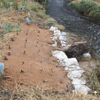 Streambank Protection