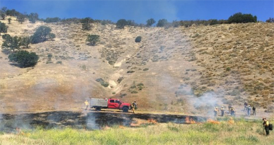 ucce prescribed burn association